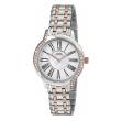 Capital Orologi Collezione New York Donna AX8155